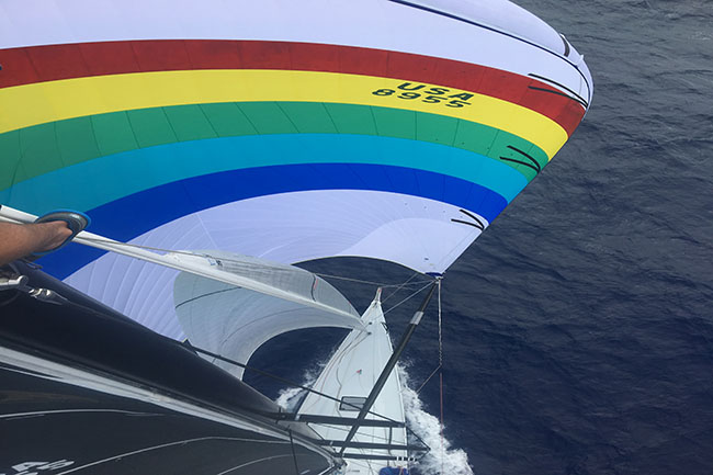 Transpac 19 Merlin battle sail